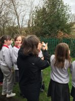 P5 Bird watching during Eco schools week
