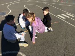Measuring Primary 4