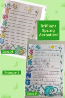 Primary 2 Spring Acrostic Poems!
